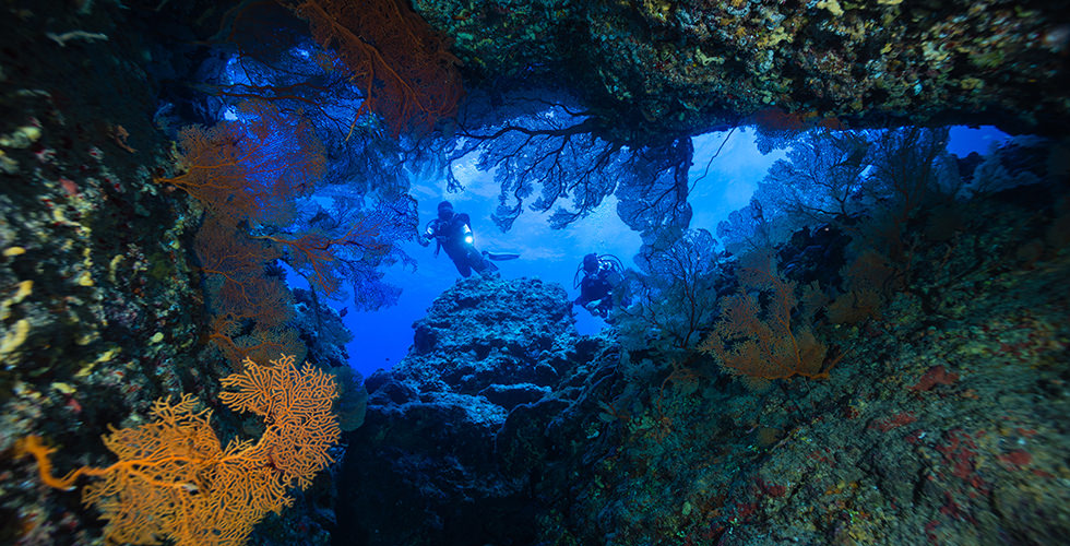 Cave diving the 10 best dive sites in the world diviac - Best dive sites ...
