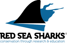 Red Sea Shark Trust