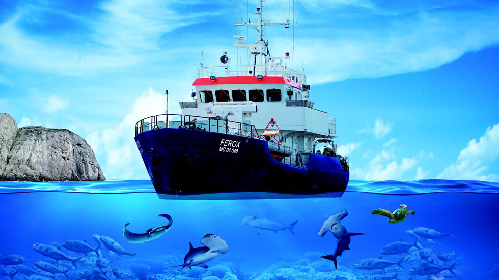 The diving liveaboard Ferox sailing to Malpelo