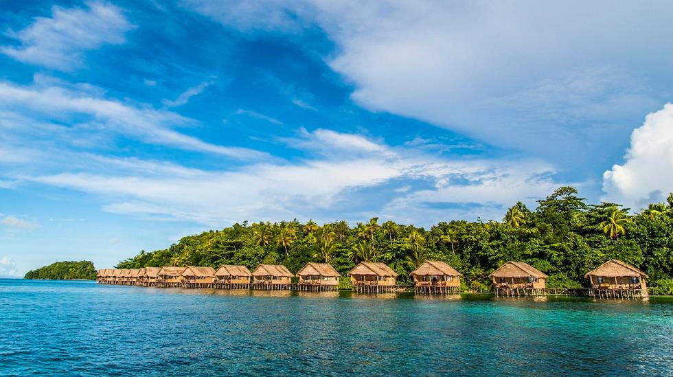 Papua-Paradise